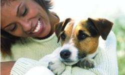 Novus Odenton Pet Friendly Apartments