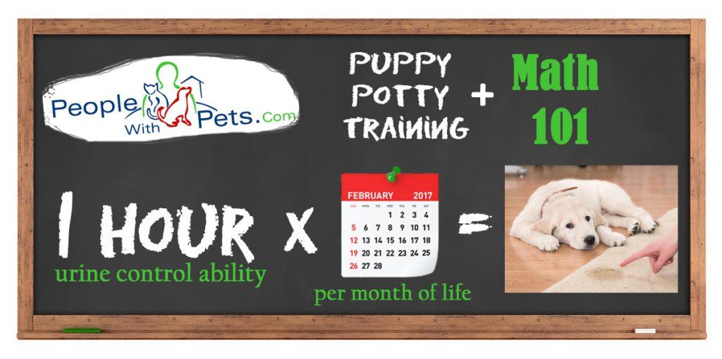 puppy potty training math
